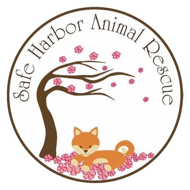 Safe Harbor Animal Rescue